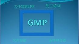 GMP应用